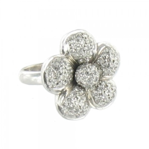 web-daisy-ring